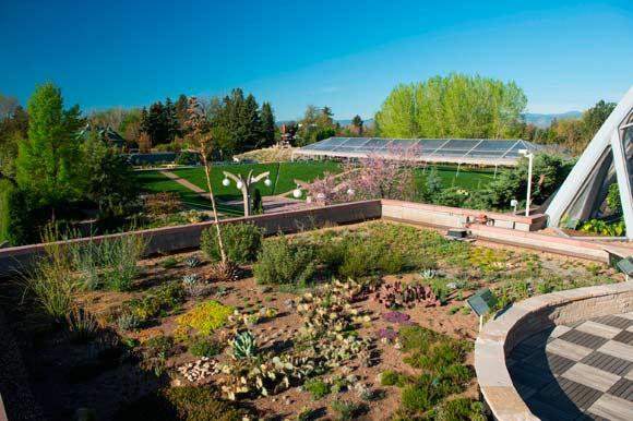 Green Roofs in Denver