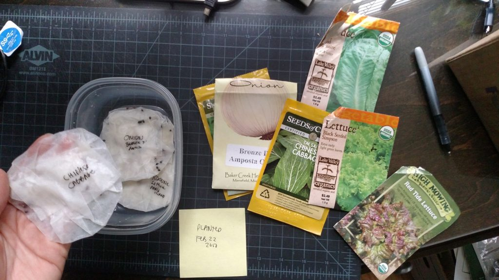 Starting Seeds indoors in wet paper towels or coffee filters