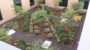 Denver Green Roof Initiative