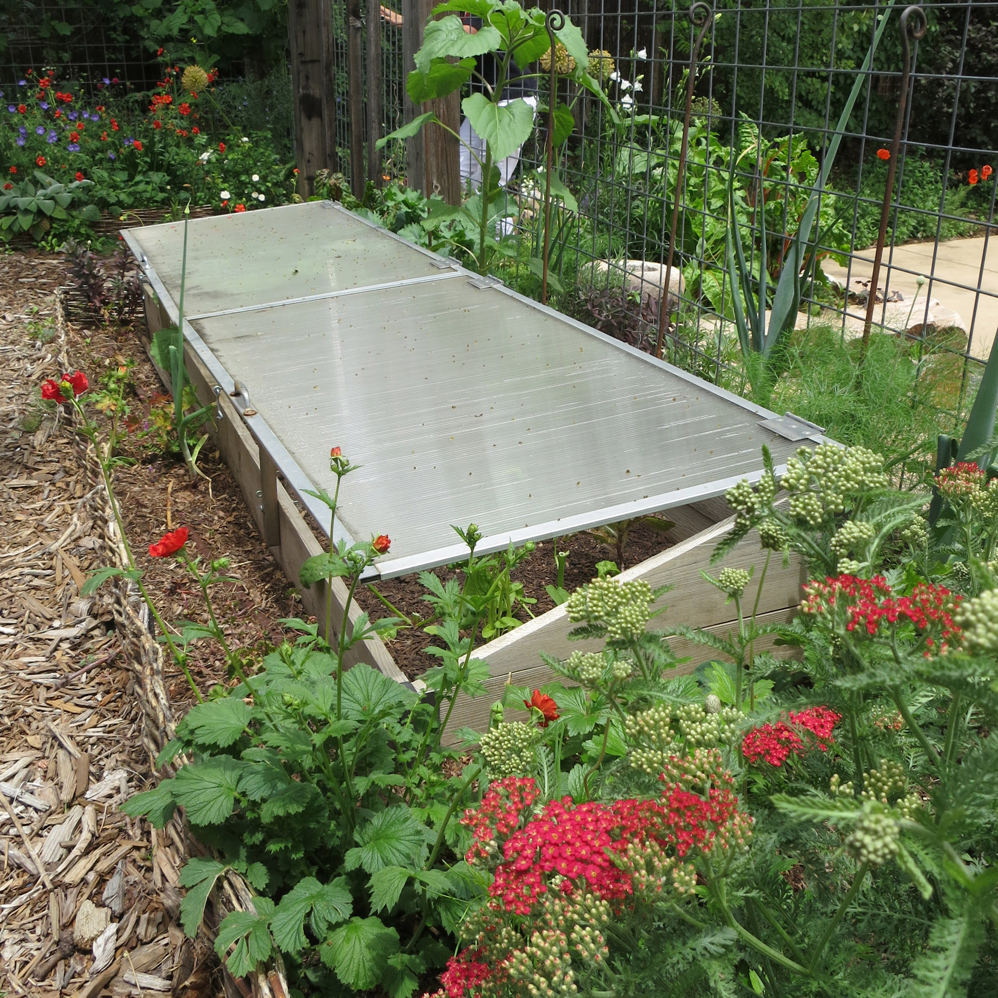 cold frames I saw during the Denver Garden Bloggers Fling -