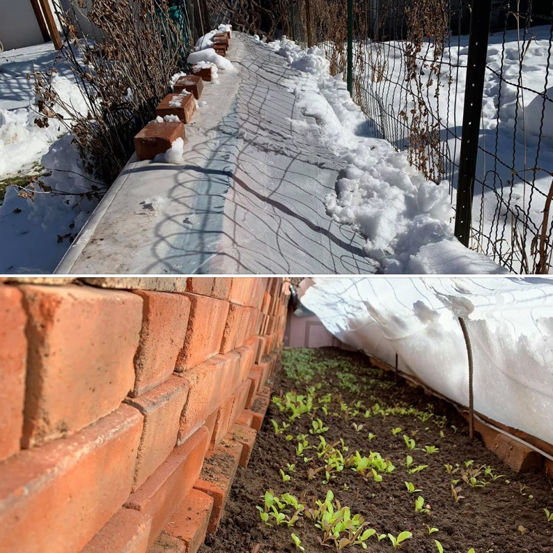 Colorado Cold Frames - Plastic over Bricks