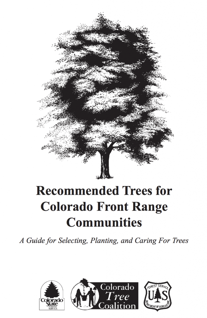 Native Trees Denver