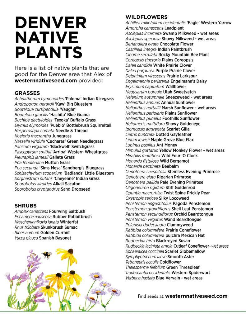Denver Native Plants list from westernnativeseed.com